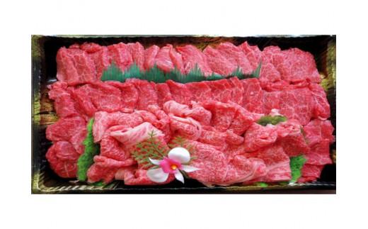小田切牧場 信州プレミアム牛特選 焼肉セット(500g)