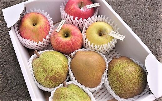 0075-2021 ラ・フランスとりんご2品種以上の詰合せ 3kg ご家庭用