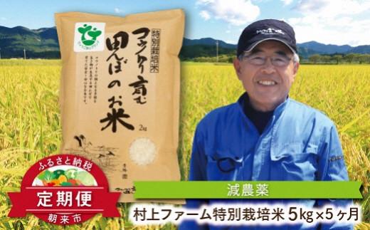 K-2-H 定期便 特別栽培米コシヒカリ5㎏×5ヶ月【村上ファーム】