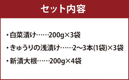 熊本県産 新漬大根 白菜漬け きゅうり浅漬け セット