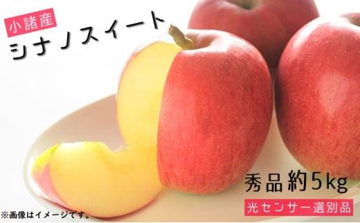 [№5915-0733]信州小諸産 シナノスイート 秀品 約5kg