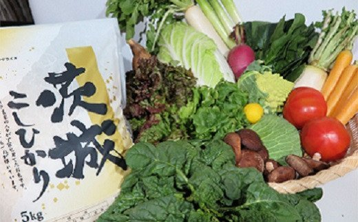 K1666 新鮮野菜を盛り沢山&茨城県産コシヒカリ5kgセット