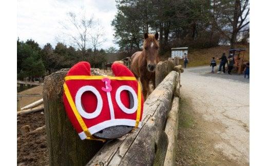 勝利のホースシューは、にんにんホーススクールのお馬さんに見守られて誕生しました。