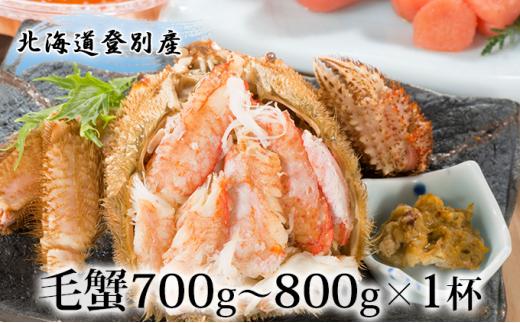[№5793-0782]北海道登別産 旬の毛蟹700g~800g×1杯