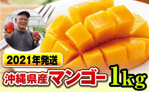【2021年発送】濃厚な甘さ!とろける食感!沖縄県産マンゴー1kg