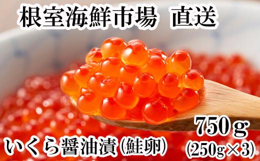 B-11012 いくら醤油漬(鮭卵)250g×3P(計750g)