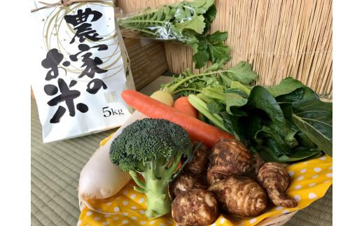 3ヵ月定期便【栽培期間農薬不使用】白米5kgと季節の野菜(4~5品)