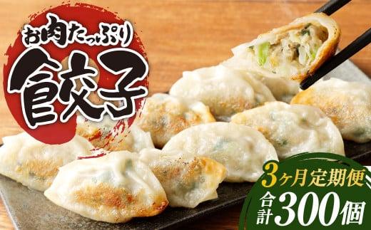 【3ヶ月定期便】お肉たっぷり餃子 約6kg(10個入×10パック×3回)
