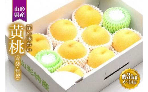 黄桃 約3kg 有袋・無袋6~14玉 F2Y-1325