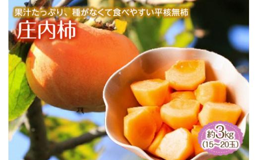 庄内柿 約3kg 15~20玉 F2Y-1340