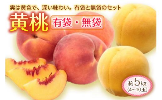 黄桃約5kg F2Y-1441