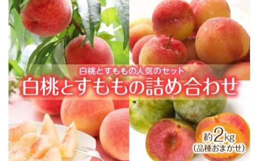 白桃とすももの詰め合わせ 約2kg 品種おまかせ F2Y-1342