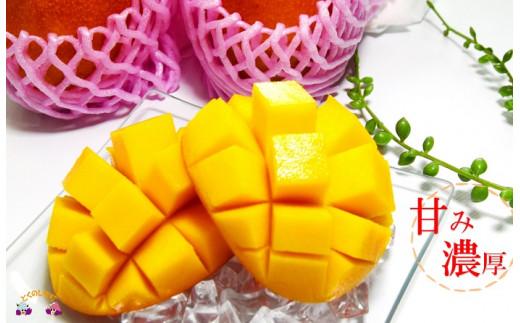 徳之島の完熟マンゴーはゆっくり時間をかけて育てますので、甘みがとっても濃厚ですよ。
