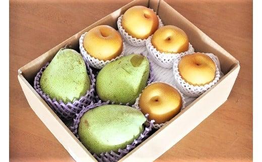 0003-2012 大玉西洋梨(マルゲリット・マリーラ)と和梨の詰合せ 3kg