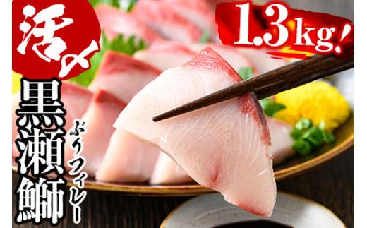 AR-B1 活じめ!黒瀬ブリの生鮮ぶりフィレー(1.3kg)刺身や煮物、焼き物等の料理に 鰤【AR-B1】