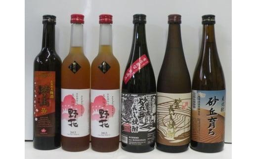 【新型コロナ対策】支援21-7 鳥取県の美味しい酒 焼酎・梅酒 6本セット