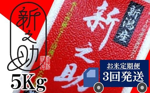 [C388]【定期便】新潟県認証特別栽培 新之助 白米(5㎏×3回)