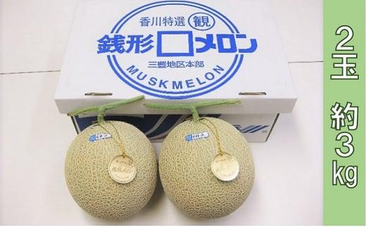 [№5850-0730]銭形メロン 2玉化粧箱入り 約3kg