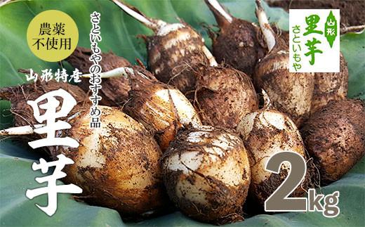 FY18-098 農薬不使用 山形特産自社栽培土付里芋2kg!(さといもやのおすすめ品)