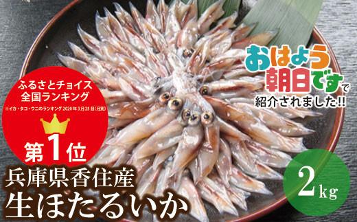 07-02 【たっぷり2kg!】兵庫県香住産 生ほたるいか(250g×8パック)