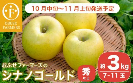 シナノゴールドは、しっかりとした甘みの中にさわやかな酸味がある長野生まれの黄色りんごです。