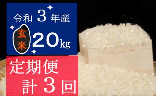 令和3年産大岸の新米(玄米)20kg【3回定期便】