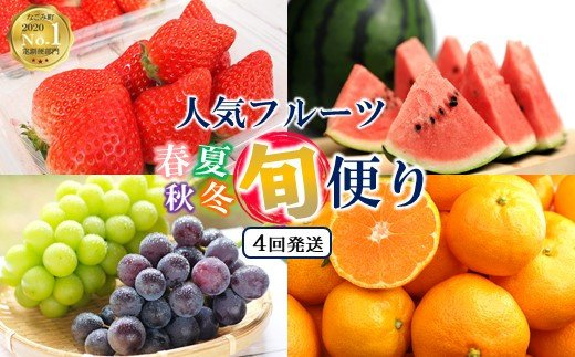 NN02 【定期便4回】春夏秋冬!旬の人気フルーツ 熊本県なごみ町