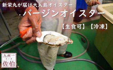 新栄丸がお届け 大入島オイスター(バージンオイスター)【生食可】【冷凍】