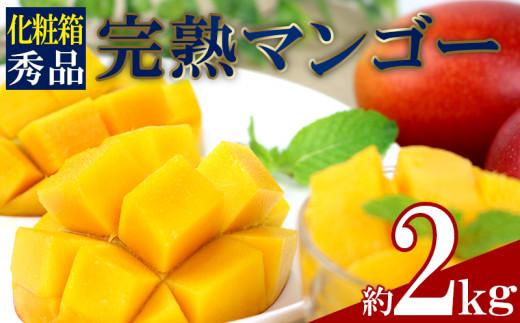 西原町 完熟マンゴー 4玉~6玉(約2kg)【化粧箱・秀品】
