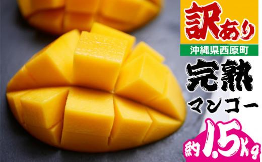 訳あり品!沖縄県西原町 完熟マンゴー約1.5Kg