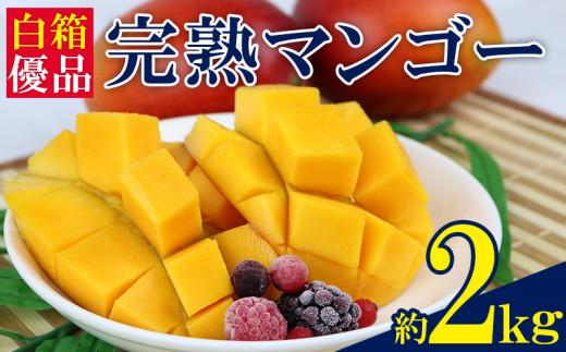 西原町 完熟マンゴー 4玉~6玉(約2kg)【白箱・優品】