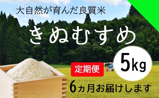 150127【令和2年産/お米定期便/6ヵ月】しまね川本 きぬむすめ 5kg (計30kg)