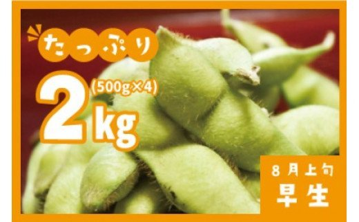 A01-647 【令和3年分先行予約】だだちゃ豆(早生) 2kg(500g×4袋)小池喜左衛門ファーム 枝豆