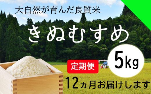 150128【令和2年産/お米定期便/12ヵ月】しまね川本 きぬむすめ 5kg (計60kg)