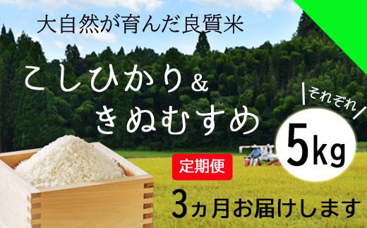 150134【令和2年産/お米定期便/3ヵ月】しまね川本 コシヒカリきぬむすめ 食べ比べセット各5kg(計30kg)