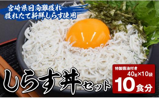 【お中元用】【マルナカ海産】しらす丼セット10食分(40g×10袋)特製醤油付き (AA061)