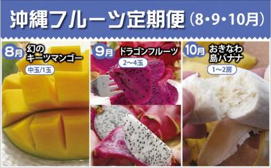 【2021年発送】沖縄フルーツ定期便(8・9・10月コース)
