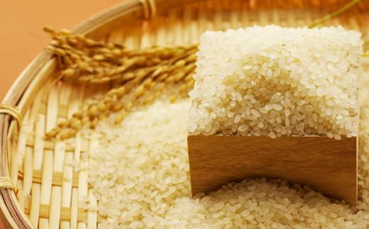 冷めても美味しく、もっちりとした粘りと甘みの強いお米です。