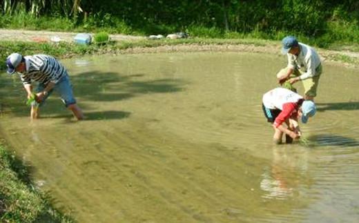 豊かな自然に囲まれて、農業体験を満喫していただけます。