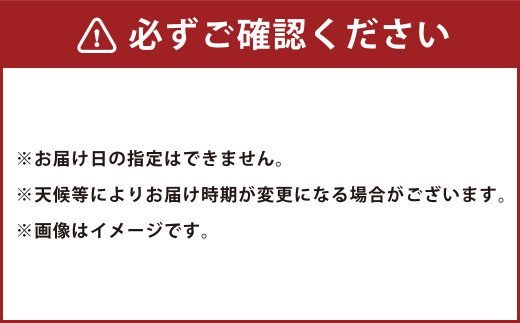 【2021年4月上旬~発送予定】サラたまちゃん10kg 玉ねぎ 30玉前後