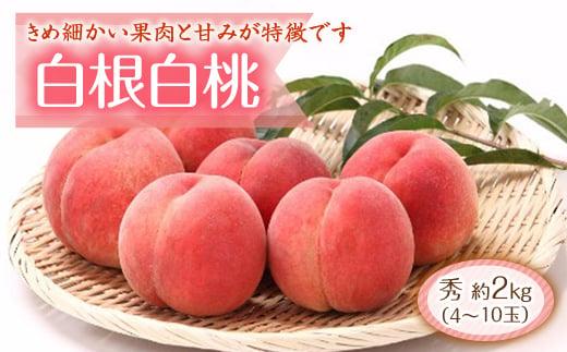 桃のメジャー品種シリーズパート3「白根白桃 約2kg」 F2Y-1801