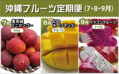 【2021年発送】沖縄フルーツ定期便(7・8・9月コース)