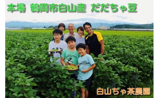 A03-606 山形セレクション認定 だだちゃ豆「甘露」1.2kg(600g×2袋)