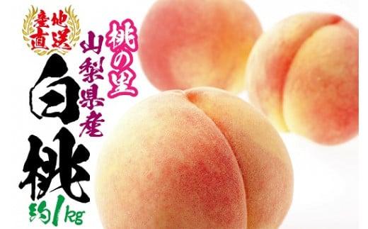 1-1-110山梨県南アルプス市産完熟桃 白桃系 約1kg(2~5玉)
