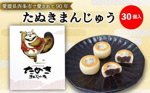 西条銘菓「たぬきまんじゅう」(30個入)