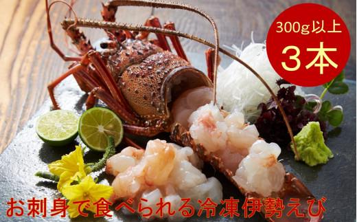 【天然】甘み凝縮!活〆伊勢海老(冷凍)[№5651-0417]