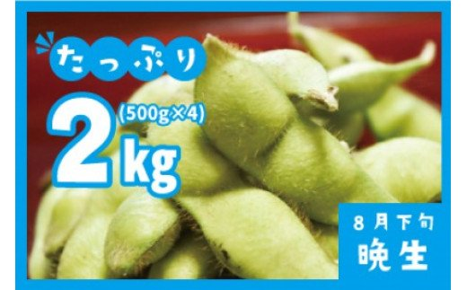A01-649 【令和3年分先行予約】だだちゃ豆(晩成) 2kg(500g×4袋)小池喜左衛門ファーム 枝豆