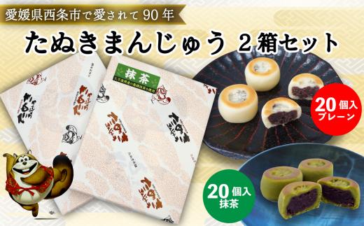 西条銘菓「たぬきまんじゅう」2箱セット(プレーン20個入・抹茶20個入)