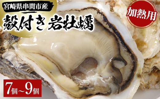 L-C3 <数量限定>串間市産!殻付岩牡蠣(加熱用・7~9個)濃厚でクリーミーな味わいを【串間市漁業協同組合】【L-C3】
