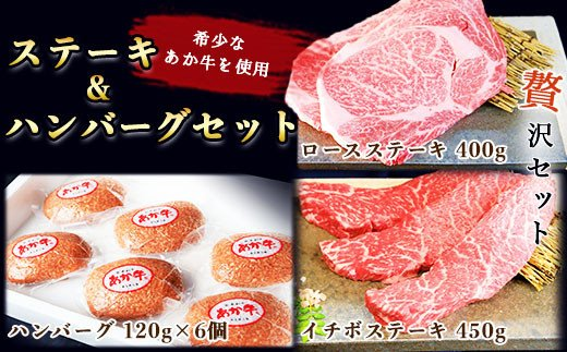 GZ011 あか牛ステーキ&ハンバーグセット <津奈木町>和牛 牛肉 肉